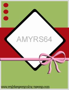amyrs64
