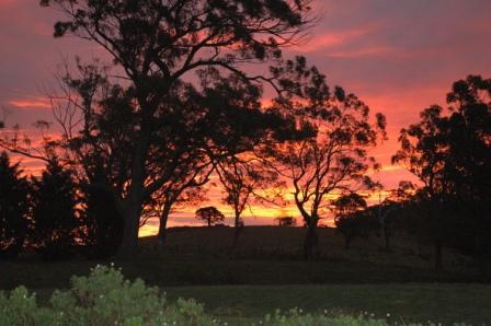 Djindi Sunset June09
