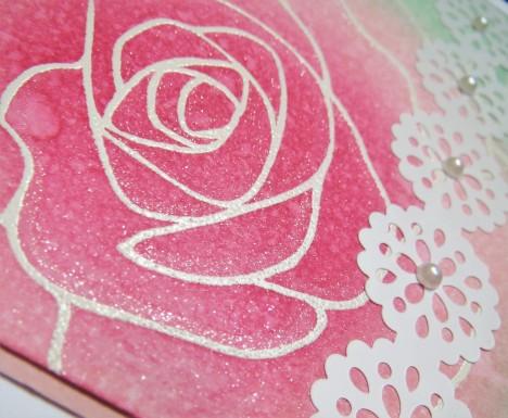 Rose Wonder SU! Feb16 (6)