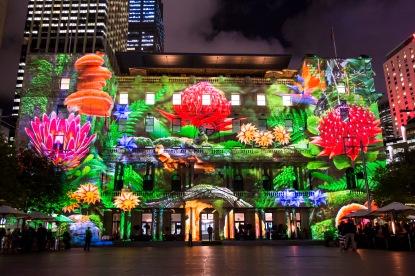 Vivid Sydney 2015