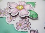 Birthday Blossoms (4)