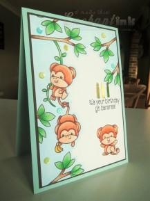 Cheeky Monkey (io-sss) Jul16 SAaug16 (2)