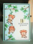 Cheeky Monkey (io-sss) Jul16 SAaug16  (3)