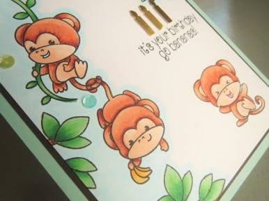 Cheeky Monkey (io-sss) Jul16 SAaug16 (7)
