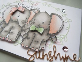 whimsy-jumbo-love-accessories-nov16-3